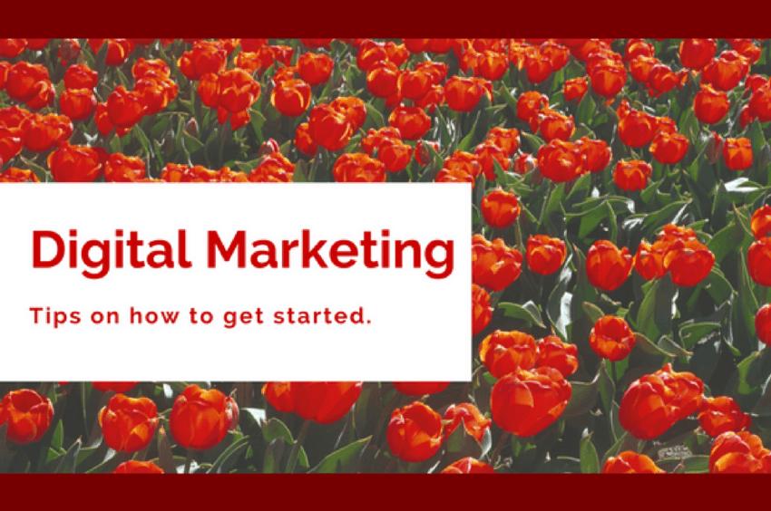 Demandzen - digital marketing tips on how to get started