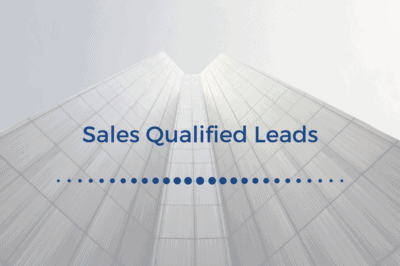 demandzen - sales qualified leads