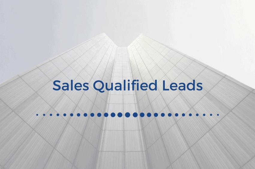 demandzen - sales qualified leads